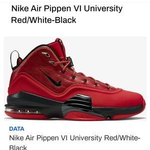 Nike Pippen 6 aniversity classic shoe